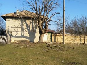 Old rural property with plot of land situated near forest