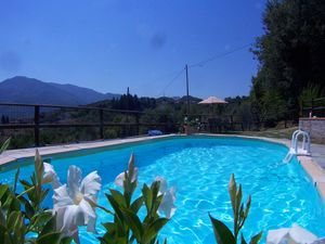 Two properties with pool near Lucca, near Barga - [V0018]