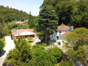 Fantastic farmhouse in Alcobaça with 26.966sqm land