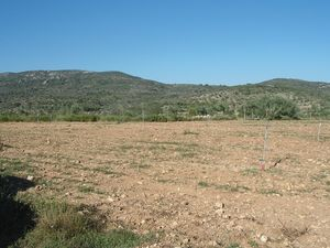 Rustic Plot Ideal For Building