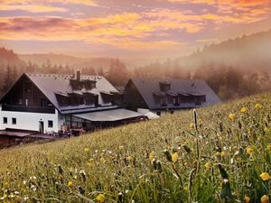 A well established hotel in Sumava National Forest