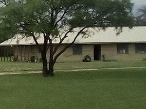 Strategic Place of Refuge on 64 Acres safely in heart of TX