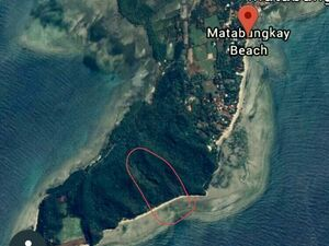 MATABUNGKAY BEACH FRONT LOT FOR SALE, 1.3 HECTARES