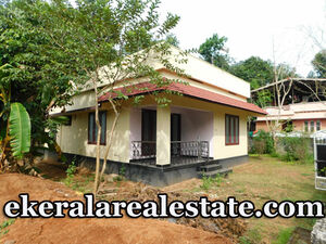Kilimanoor house for sale