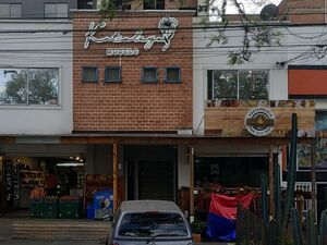 Commercial Property - Three units (with tenants)