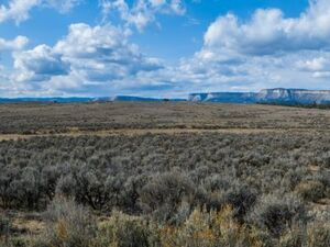 Gorgeous 10 Acres of Land For Sale in El Vado New Mexico.