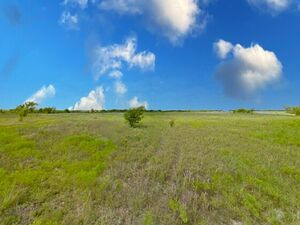 Ready to Build lot in a Country Setting - Decatur TX 76234
