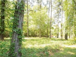 2 pristine lots in a Lakeside Community - Texas 77316