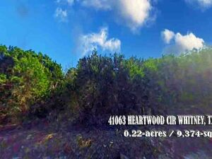 Great Investment for Vacant Land on Lake Whitney, TX