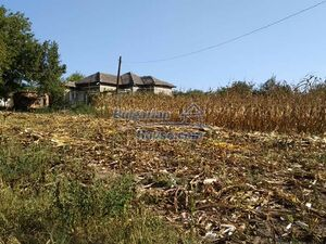 Bulgarian property for sale with a large yard 6000sq.m.